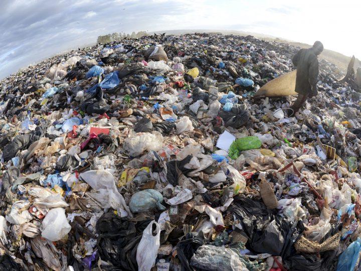 5 de junho – Dia Mundial do Meio Ambiente, dia sem plástico na IECLB